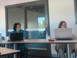 Women working on laptops